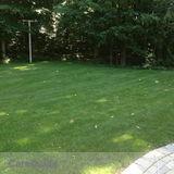 Foien's Lawn & Landscape - Full Service Lawn Care