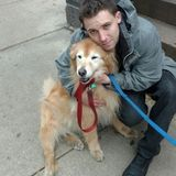 Local dog walker, with 12 years experience caring for the many dogs of Cobble Hill/ Brooklyn Heights.