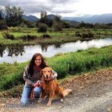 Qualified and Experienced Pet-Sitter - available immediately!