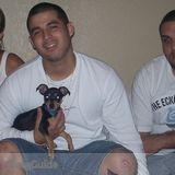 Dog Walker, Pet Sitter in Hollywood