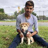 Charlottesville, Virginia Animal Lover