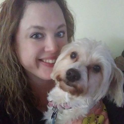 Pet Care Provider Amanda Morrison's Profile Picture