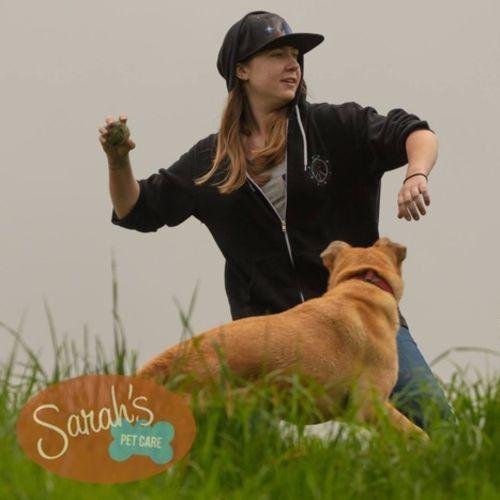 Pet Care Job Sarah B's Profile Picture