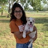 My name is Anissa and I offer walking animals, pet sitting or anything you need. Ive worked at a vet hospital for 3 years.