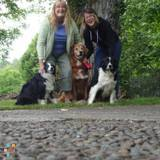 Dog Walker, Pet Sitter in Bremerton