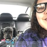 Dog Walker, Pet Sitter in Dearborn