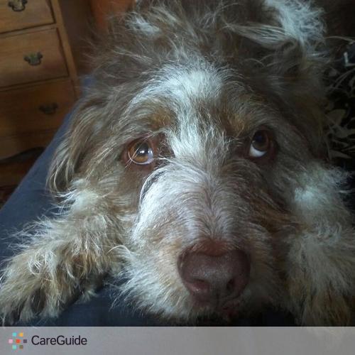 Pet Care Provider Marina Kurakin's Profile Picture