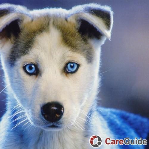 Pet Care Provider Dana Daugherty's Profile Picture