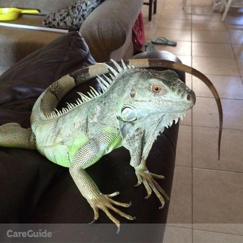 Pet Care Provider Chelsea S's Profile Picture