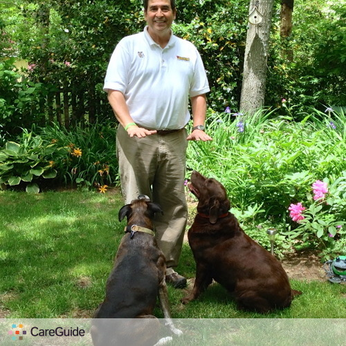 Pet Care Provider Cape Cod B's Profile Picture