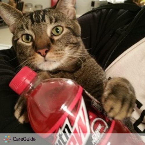 Pet Care Provider Adam Friedman's Profile Picture
