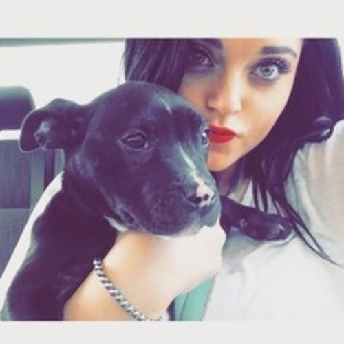 Pet Care Provider Savannah Gardiner Gallery Image 1