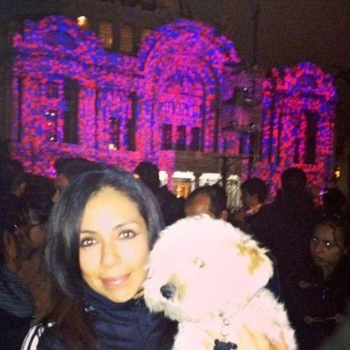 Pet Care Provider Lu Baez's Profile Picture