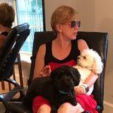 Breathe-Easy Dog Services - WalkRunHousesittingVisit
