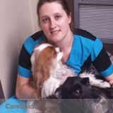 Professional Groomer looking to spend more time with animals