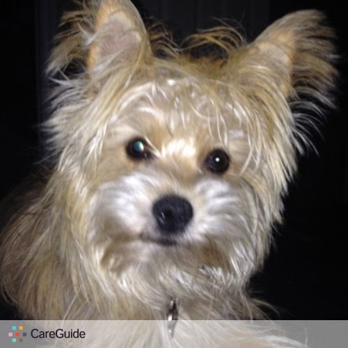 Pet Care Provider Maja Raseta's Profile Picture