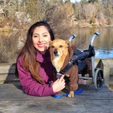 Available: Responsible and caring pet sitter in Mundelein, Illinois