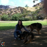 Dog Walker, Pet Sitter in Monrovia