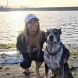 Seeking Pet Sitter Jobs in North County San Diego