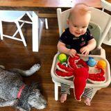 Vancouver Nanny Posting- Start December 2019