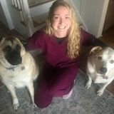 I am a Licensed Veterinary Technician Looking For an extra Pet Sitting Job in Monroe, New York.