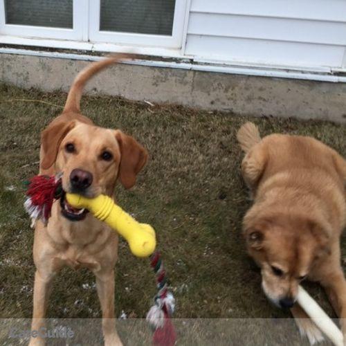 Pet Care Provider Suzanne Gaut's Profile Picture