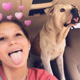 Most Trustworthy Pet Sitter In Middleburg.