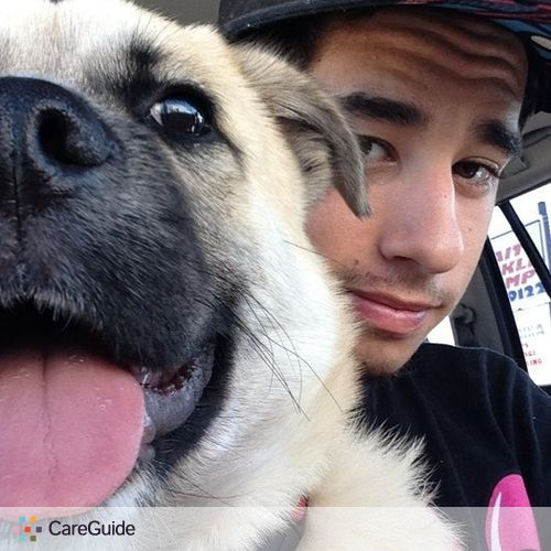 Pet Care Provider Dylan Keegan's Profile Picture
