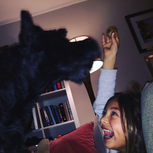 Pet Care Provider Natalya Villa's Profile Picture