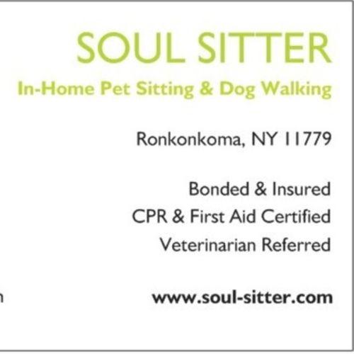 Soul Sitter Companion Sitting - Job Opening - Dog Walker Job, Pet