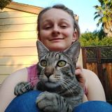 Available: enthusiastic animal lover interested in caring for all sorts of pets