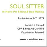 Dog Walker Job, Pet Sitter Job in Lake Grove