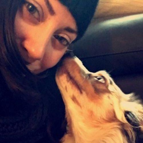 Pet Care Provider Laura Cote's Profile Picture