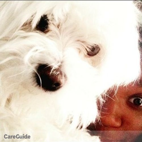Pet Care Provider Madison Gillespie's Profile Picture
