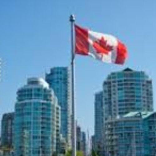 Canadian Nanny Provider Seray B's Profile Picture
