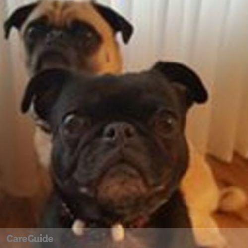 Pet Care Job Leslie Heathers's Profile Picture