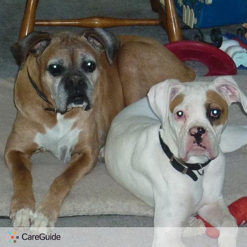 Pet Care Provider Boxer Mom's Profile Picture
