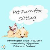 Dog Walker, Pet Sitter in Lutz