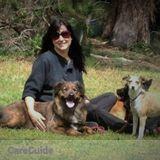 Dog Walker, Pet Sitter, Kennel in San Francisco