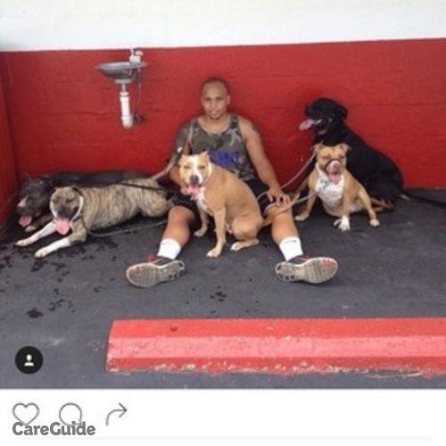 Pet Care Provider Julian Ladd's Profile Picture