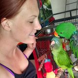 Dog, reptile, fish/coral, and bird/parrot sitter in New Port Richey