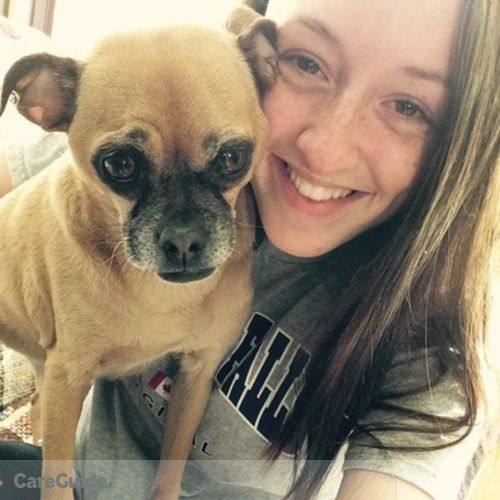 Pet Care Provider Brittany Eckert's Profile Picture