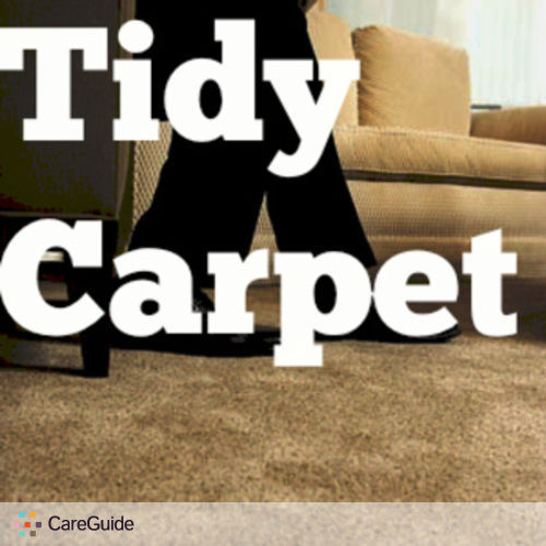 Housekeeper Provider Tidy Cleaning Company's Profile Picture