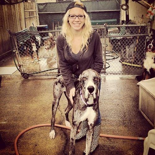 Pet Care Provider Zoe W Gallery Image 1