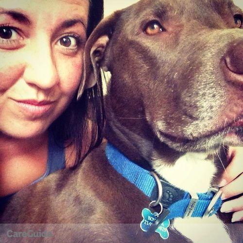 Pet Care Job Lauren Wiley's Profile Picture