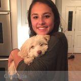 Dog Walker, Pet Sitter in Walnut Creek