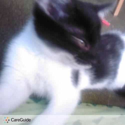 Pet Care Provider Tina H's Profile Picture