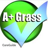 Affordable Lawn Care - A+ Grass