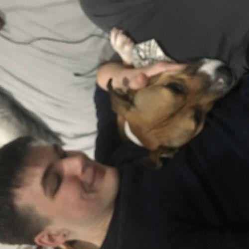 Pet Care Provider Brett S's Profile Picture
