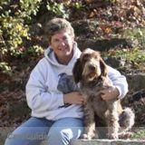 Dog Walker, Pet Sitter in Rockton